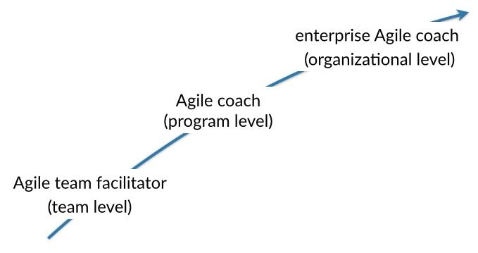 coach agile evolution