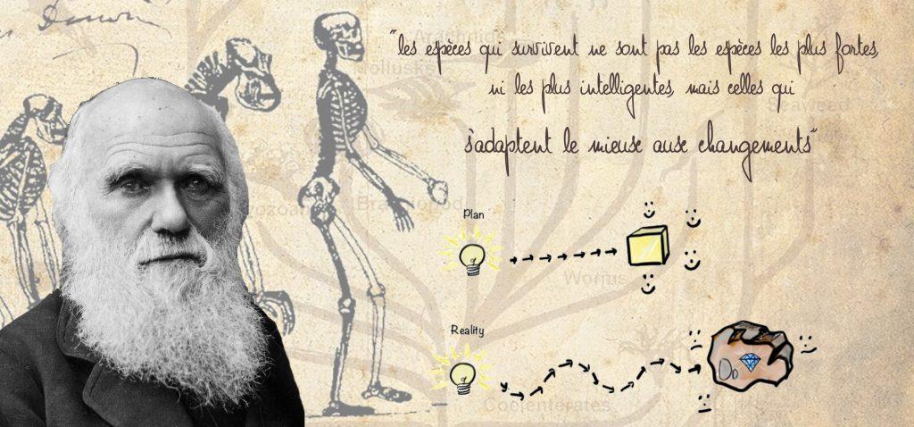 darwin agiliste adaptation