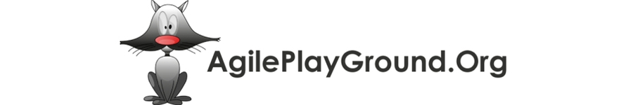 Agile Play Ground 11