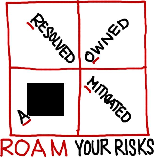 ROAM RISKS